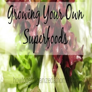 Growing Your Own Superfoods