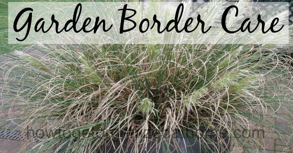 Garden Border Care How To Get Organized At Home
