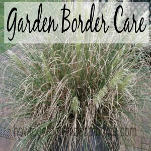 Garden Border Care