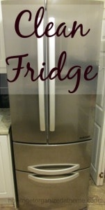 National Clean Your Fridge Day
