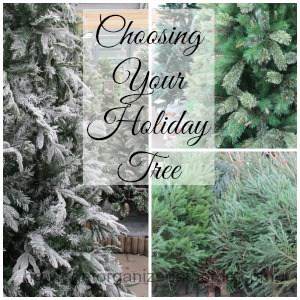 Holiday Tree Selection