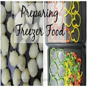Freezer Food Preparation For The Holiday's