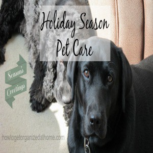 Your Pet Care This Holiday Season