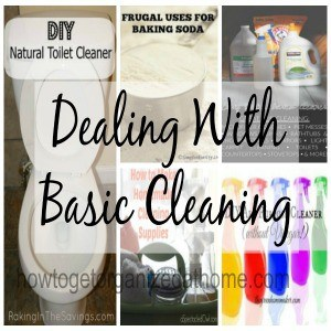 Dealing With Basic Cleaning
