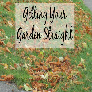 Getting Your Garden Straight