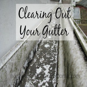 Clearing out your gutter is important, these can get clogged with leaves and other material, which can lead to blockages, flooding, and damp.
