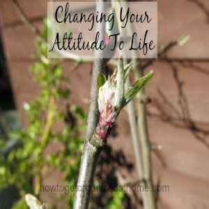 Changing Your Attitude To Life