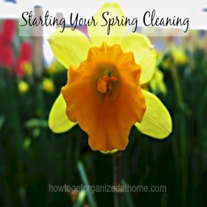 Starting Your Spring Cleaning