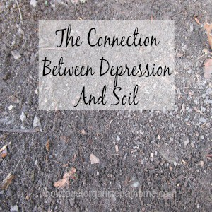 The Connection Between Depression And Soil