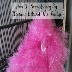 How To Save Money By Cleaning Behind The Fridge