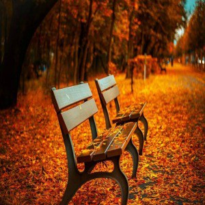 10 Ways To Deal With Autumn Anxiety