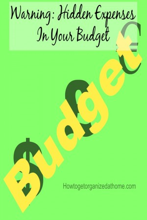 Finding hidden expenses in your budget can save you money each month, it is, after all, better for your money to work for you than big corporations.
