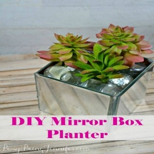 DIY Mirror Planter Box