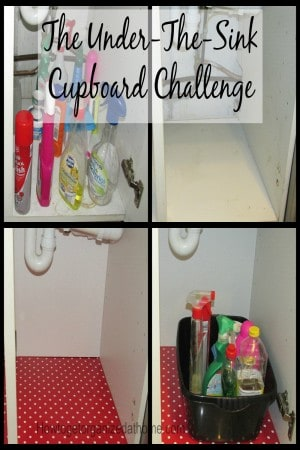 I needed to face my under-the-sink cupboard challenge, I had let fear take hold and create a monster instead of a quick household project!