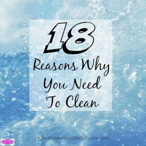 Do you wonder why you need to clean your home, why you need to clean the same things each day, week or year? Click to be inspired to clean!