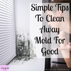 Do you want to know how to get rid of mold from your windows? Grab some cleaning tips here!