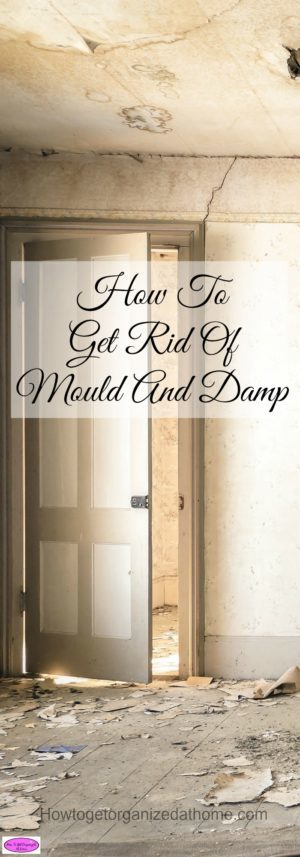 Mould and damp cause health issues, it is important that you are able to rectify the situation and remove all traces of mould and damp from your home.