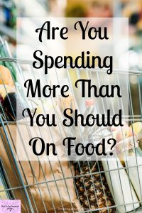 It's difficult to know how much you should spend on your grocery budget each week! These tips and ideas will help you focus on what's right for you and your family and how much you need to spend on your grocery budget!
