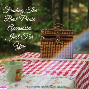 Finding the best picnic accessories isn't something I worried about before children, but being able to grab picnic supplies easily makes a difference!