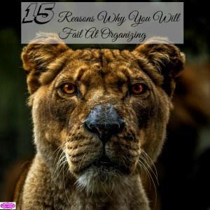 15 Reasons Why You Fail At Organizing