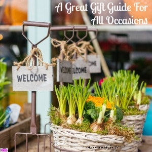 A Great Gift Guide For All Occasions