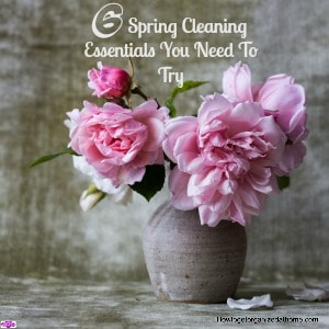 When it comes to getting your spring cleaning essentials ready for the cleaning task ahead these are the 6 items I think you should use!