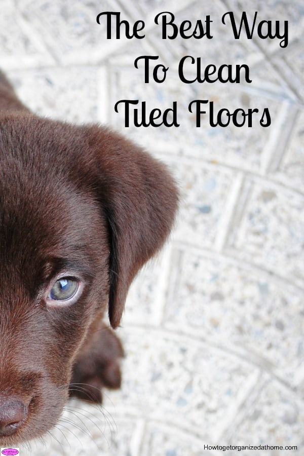 How you clean tiled floors doesn't have to be difficult, it is better to keep on top of the dust daily. Click the link to see how I clean them!