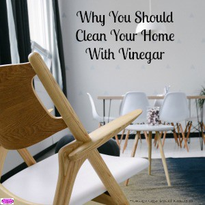 Why You Should Clean Your Home With Vinegar