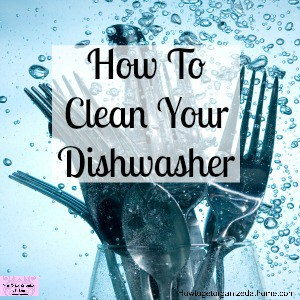 Tackle your dishwasher before it starts to smell with these simple and easy tips and ideas!