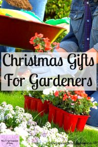 Gift ideas for gardeners isn't tricky when you think about what unique garden gift you could get!