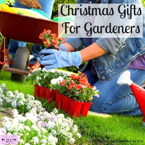 Finding Great Gift Ideas For The Gardener In Your Life