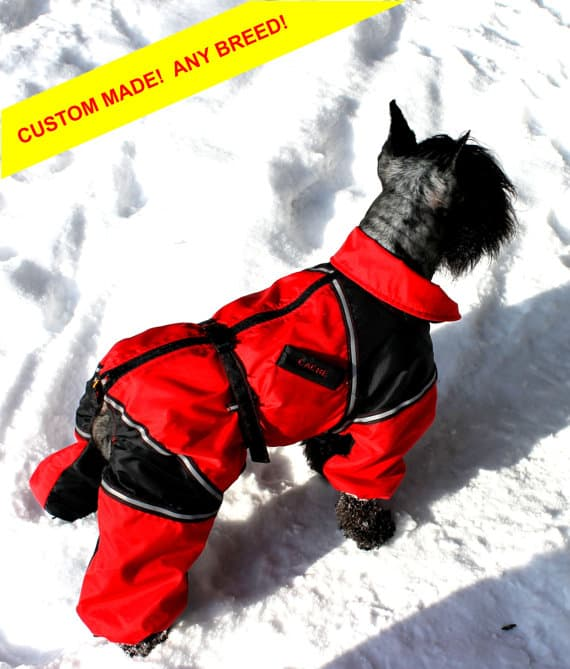 Dog snow suit