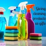 Finding the right gifts for those people who love to clean!