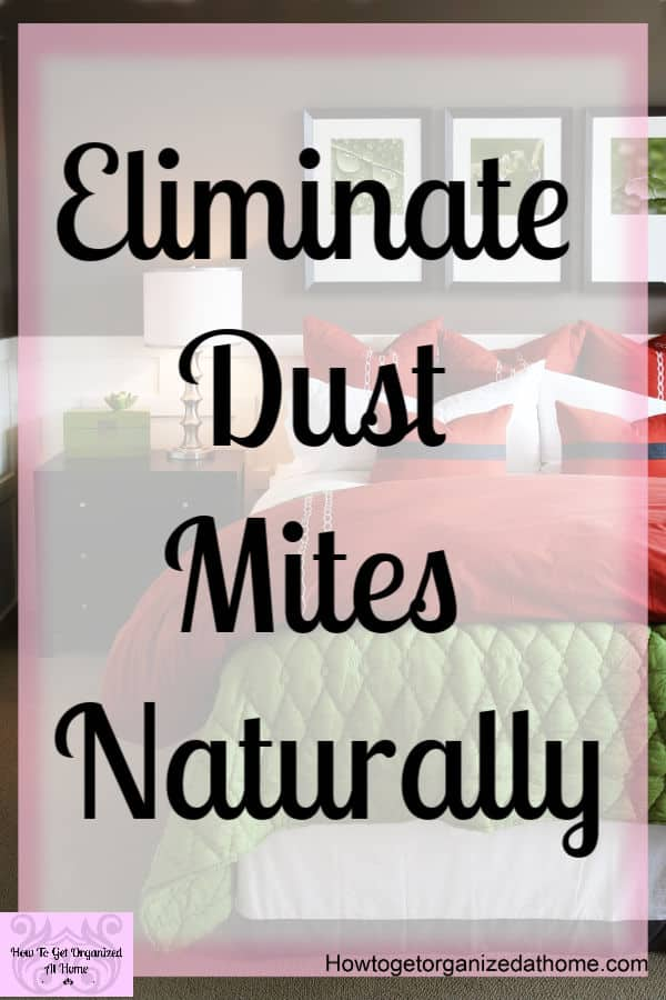 Cleaning your home is important, especially so in the bedroom! Reducing dust mites in the bedroom in a non-toxic way is key to looking after your health! Find out how to reduce the dust mites in your bedroom!