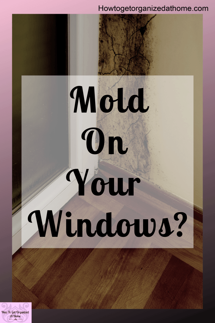 Have you got mold on your window sills? Having mold on your window sills is a pain but there are things that you can do to make it go away! These tips are what i use to keep my windows mold free! #mold #mould #moldonwindow