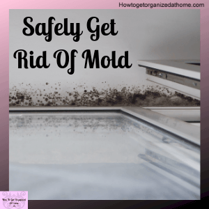 Learn how to remove mold from your windows for good. You might be surprised as what products you should be using and what you need to avoid.