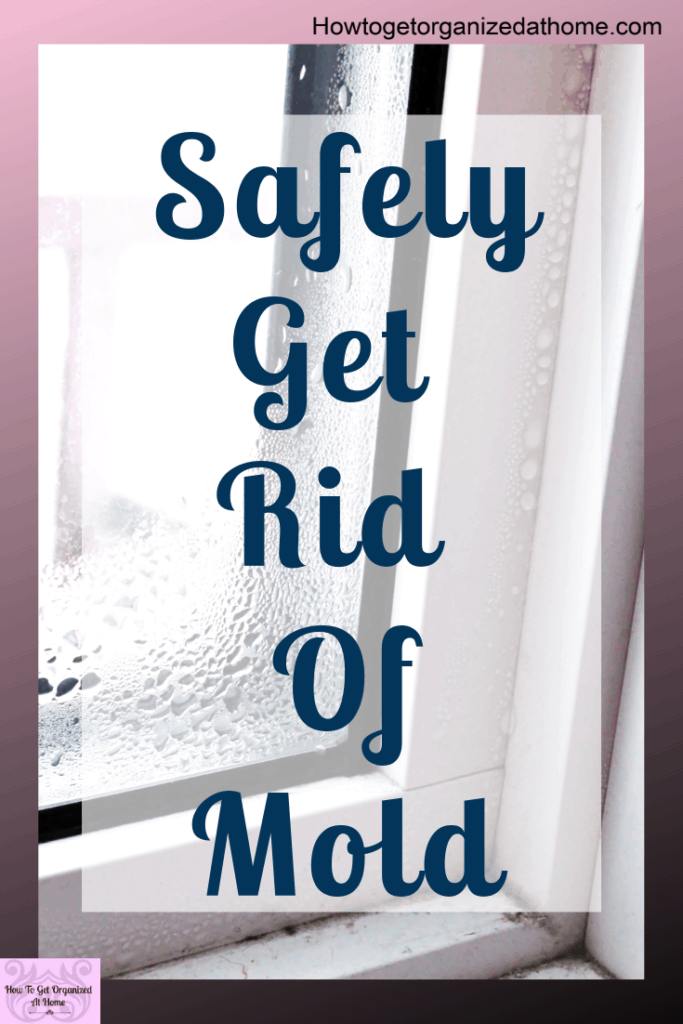 Mold isn't good for your health get rid of it with these simple tips and ideas that will transform how you treat mold. You don't want to breathe in spores or spread the mold further. Kill it for good with these tips and ideas for the best products to use. #mold #mould #moldy