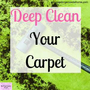 Simple tips and ideas on getting your carpets clean before the holidays. It might not be as difficult as you might think.